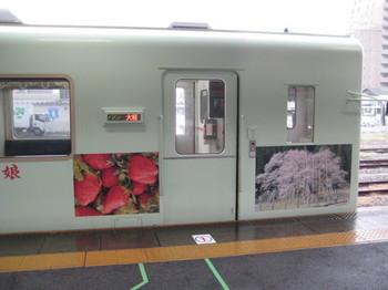 IMG_9800.JPG